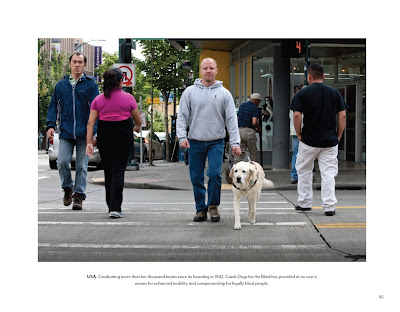 Chad and yellow Lab crossing busy street