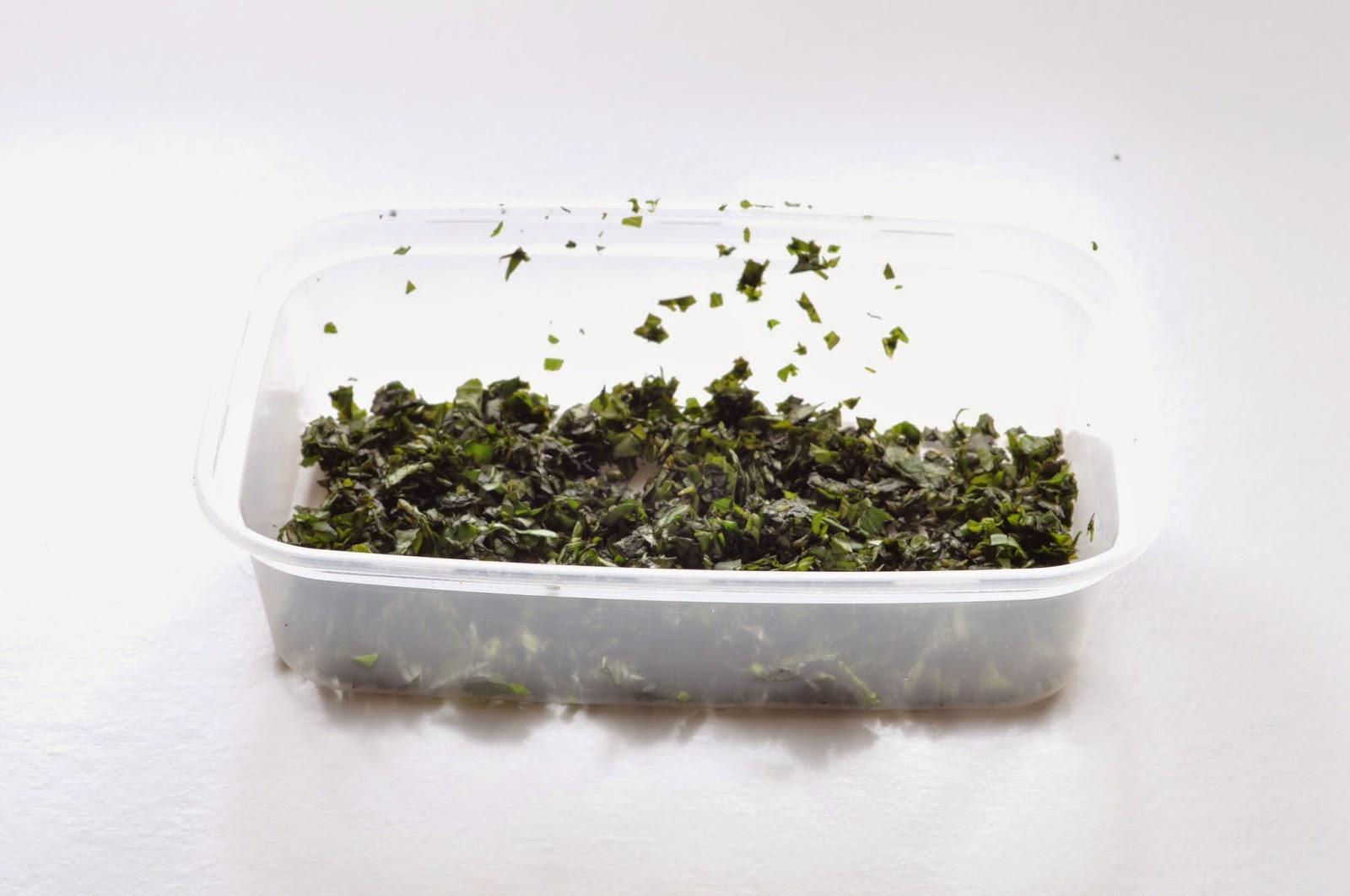 Frozen Herbs ~ Simple Food
