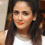 Parul Yadav Photos at South Scope Calendar 2014 Launch Photos 252840%2529