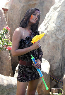 Poonam pandey waterless holi stills | Latest PHot Photo shoot -2013