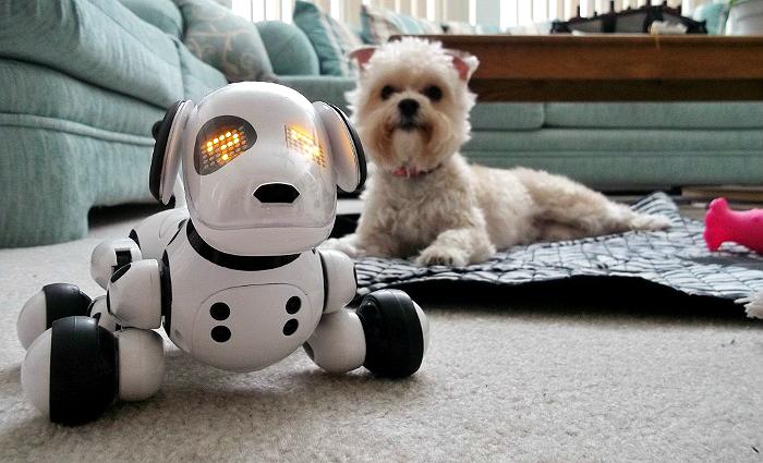 Zoomer the Robotic Dog