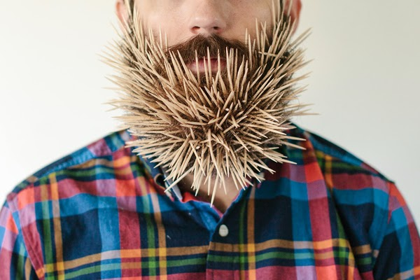 Will It Beard - a photo series testing which random objects can be stuck into a beard - Happiness is...