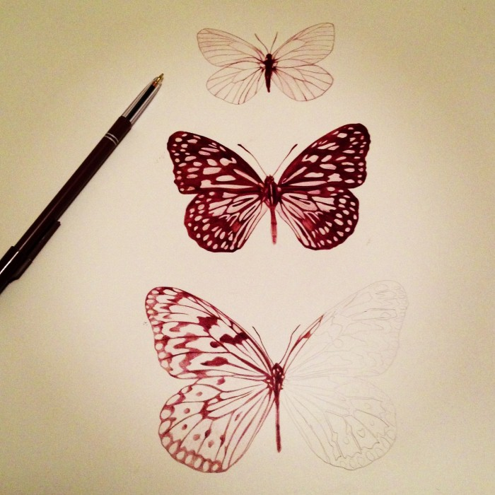 Butterfly Tumblr Drawing Digitalspace Info