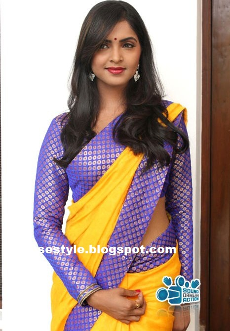 BANARASI SAREE BLOUSE