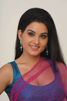 Hot Actress Kavya Singh hot photo Pink saree from teacher Movie