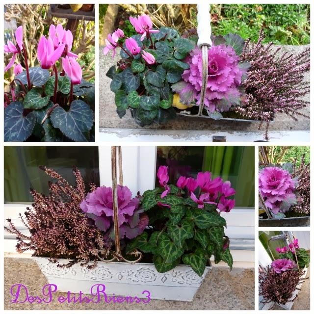 jardiniere pour l ete toujours fleuries