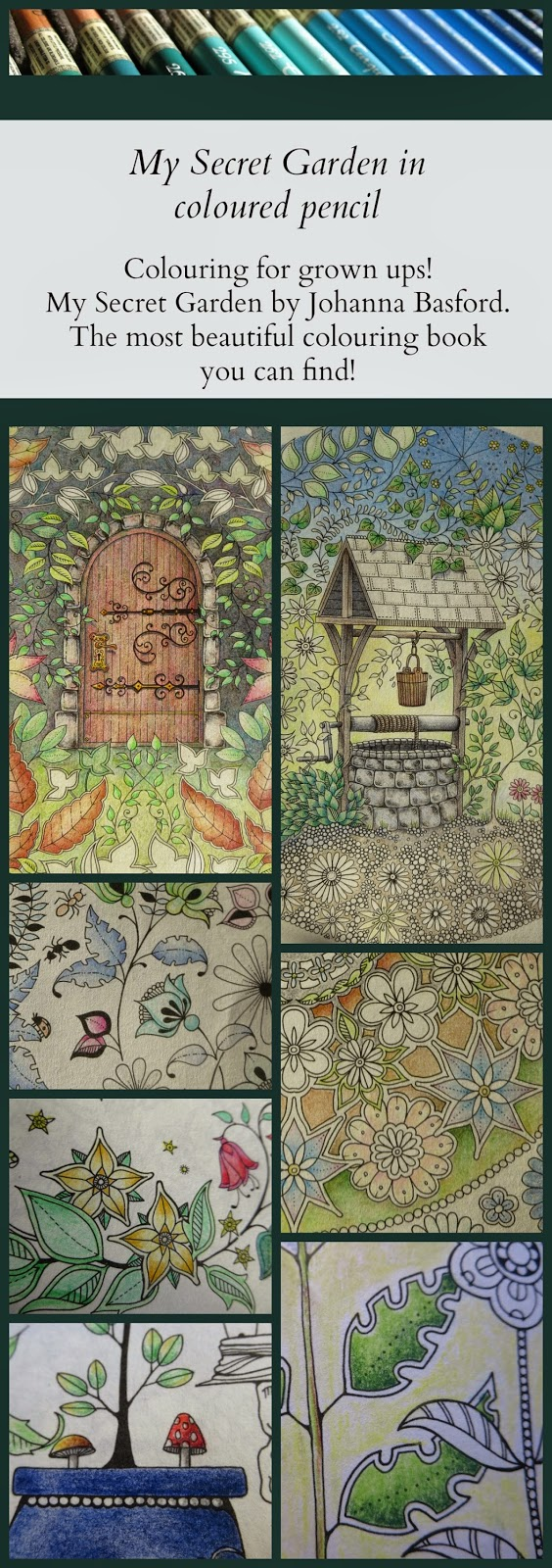 The secret garden coloring book finished - My Secret Garden Colouring Book Part 3