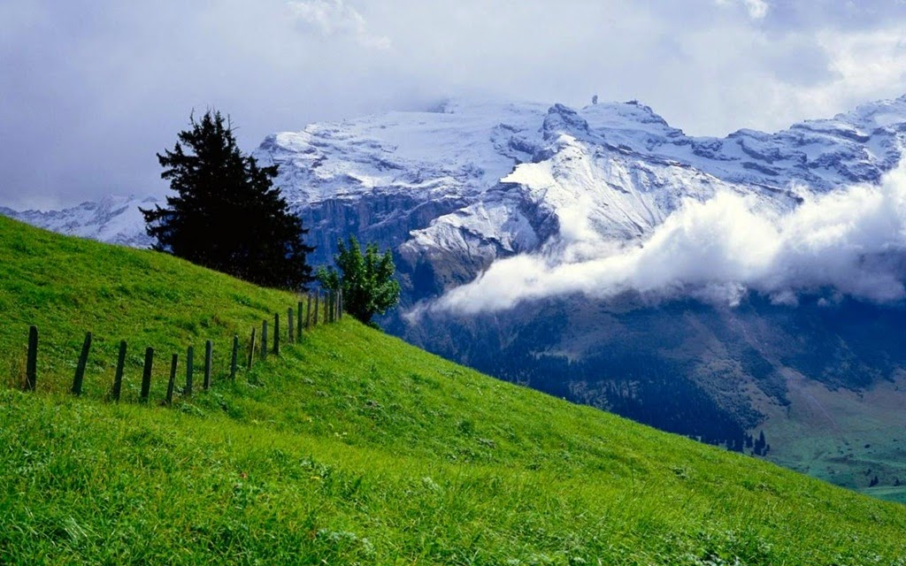 http://www.funmag.org/pictures-mag/nature/beautiful-nature-wallpapers-15-photos/