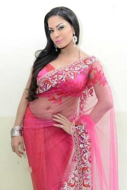 Veena Malik Spicy Navel Photos In Pink Saree