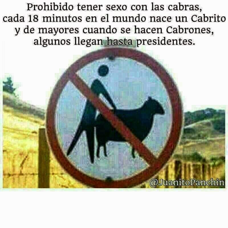 Prohibido sexo con cabras