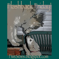 "Host of ""Flashback Friday"" Blog Hop"
