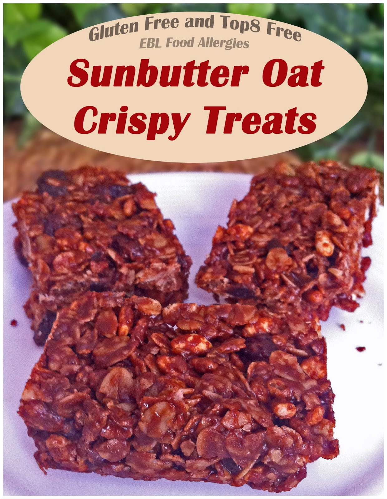 EBL Food Allergies: Sunbutter Oat Crispy Treats -top8free gluten-free corn-free