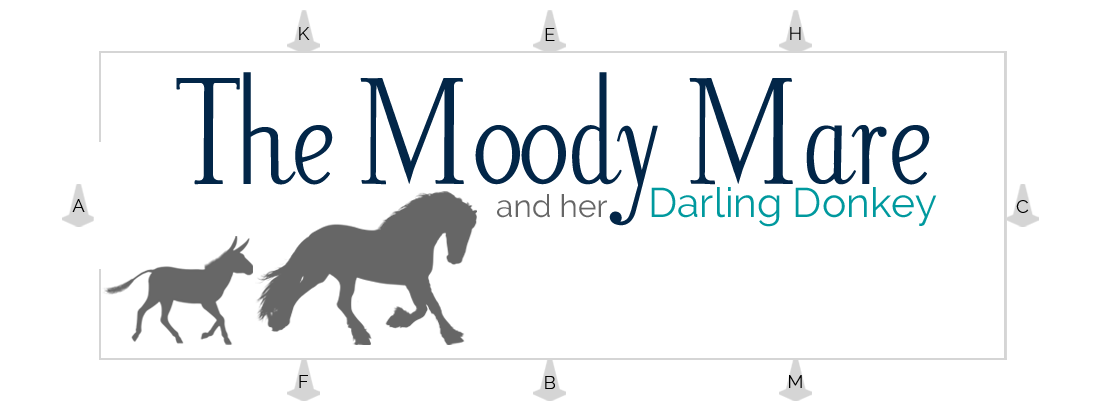 The Moody Mare
