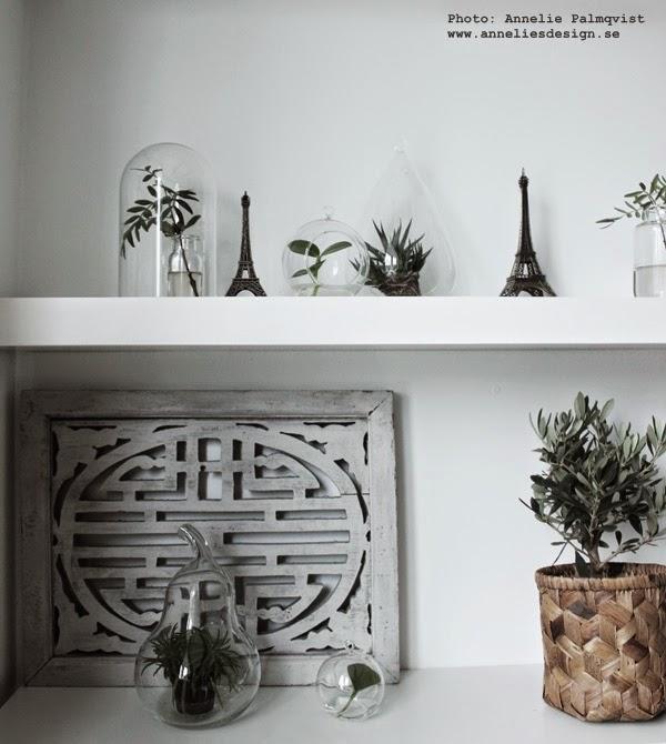 hylla, vita hyllor, flytande hyllplan, glaskupor med blommor, gröna växter i glaskupor, korg, olivträd, dekoration, inredning, inredningsblogg, vita, svart och vitt, svartvita,