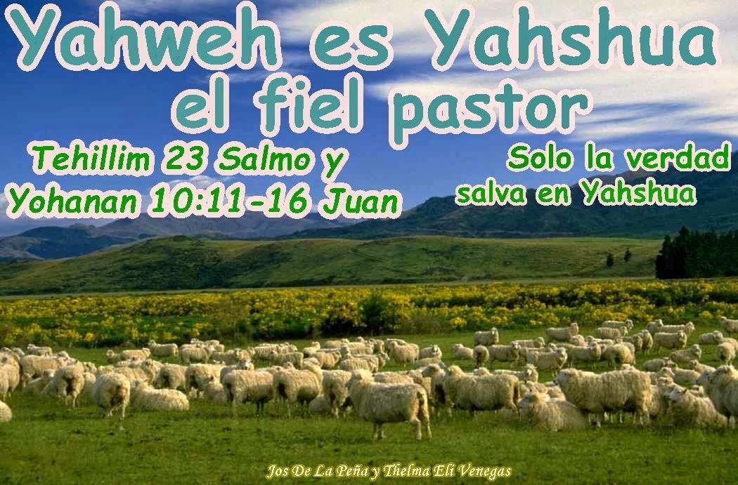 YahwehYahshua EL guia y unico fiel Pastor