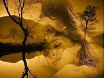 Amar...Um Sentimento Indefinido