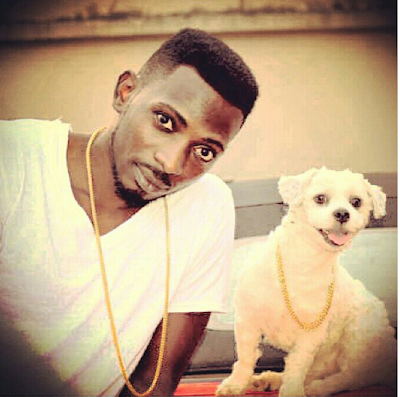 MayD's Dog has got swag... Its Got its own GOLD Chain, See Photos