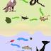 Ketergantungan pada ekosistem (biotik dan abiotik)