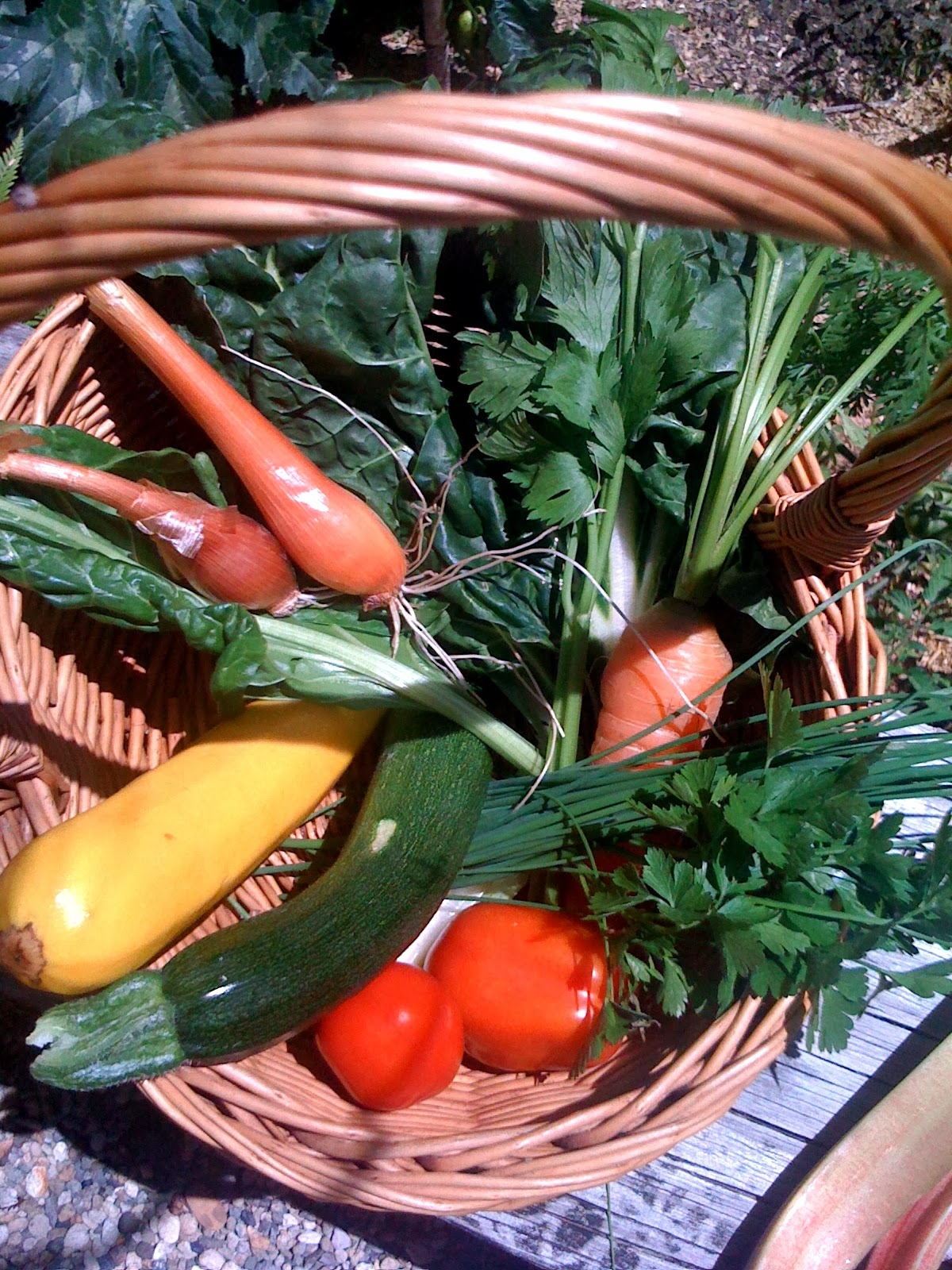 a basket of veggies from the garden to make soup