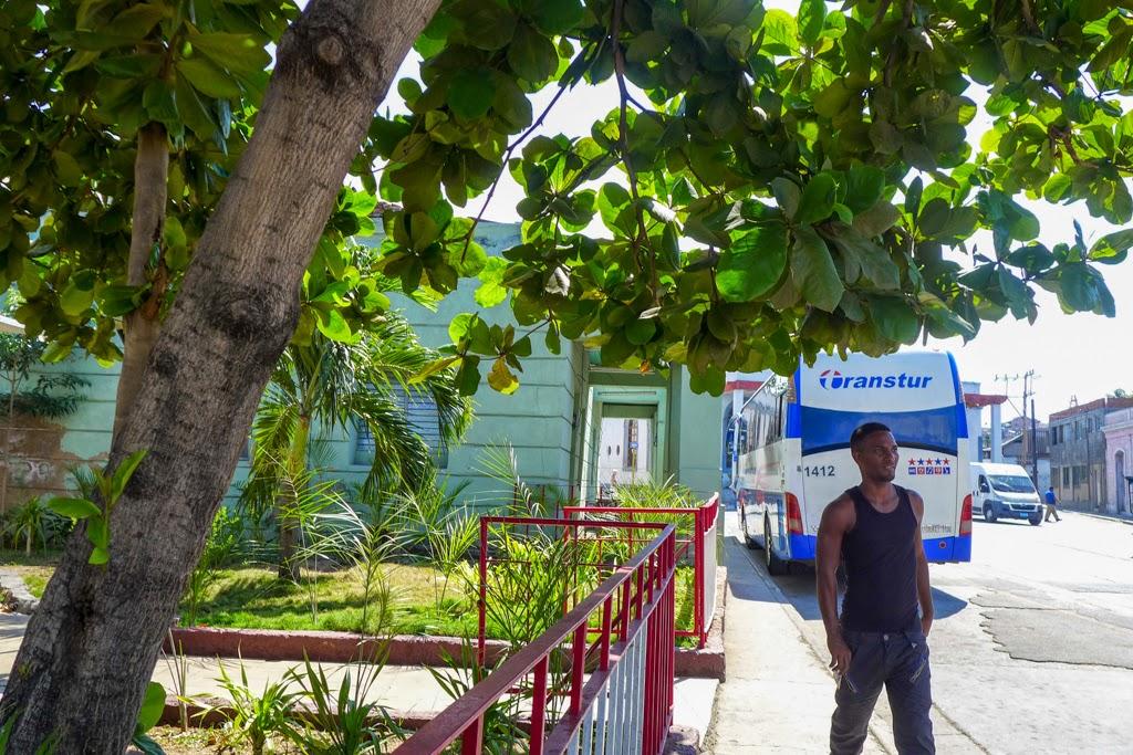 Santiago de Cuba street scene with trees