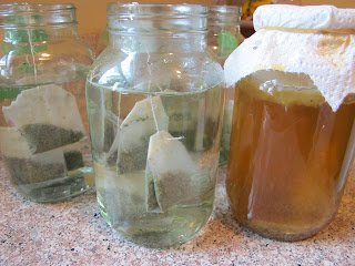 Making Kombucha at Home is Easy