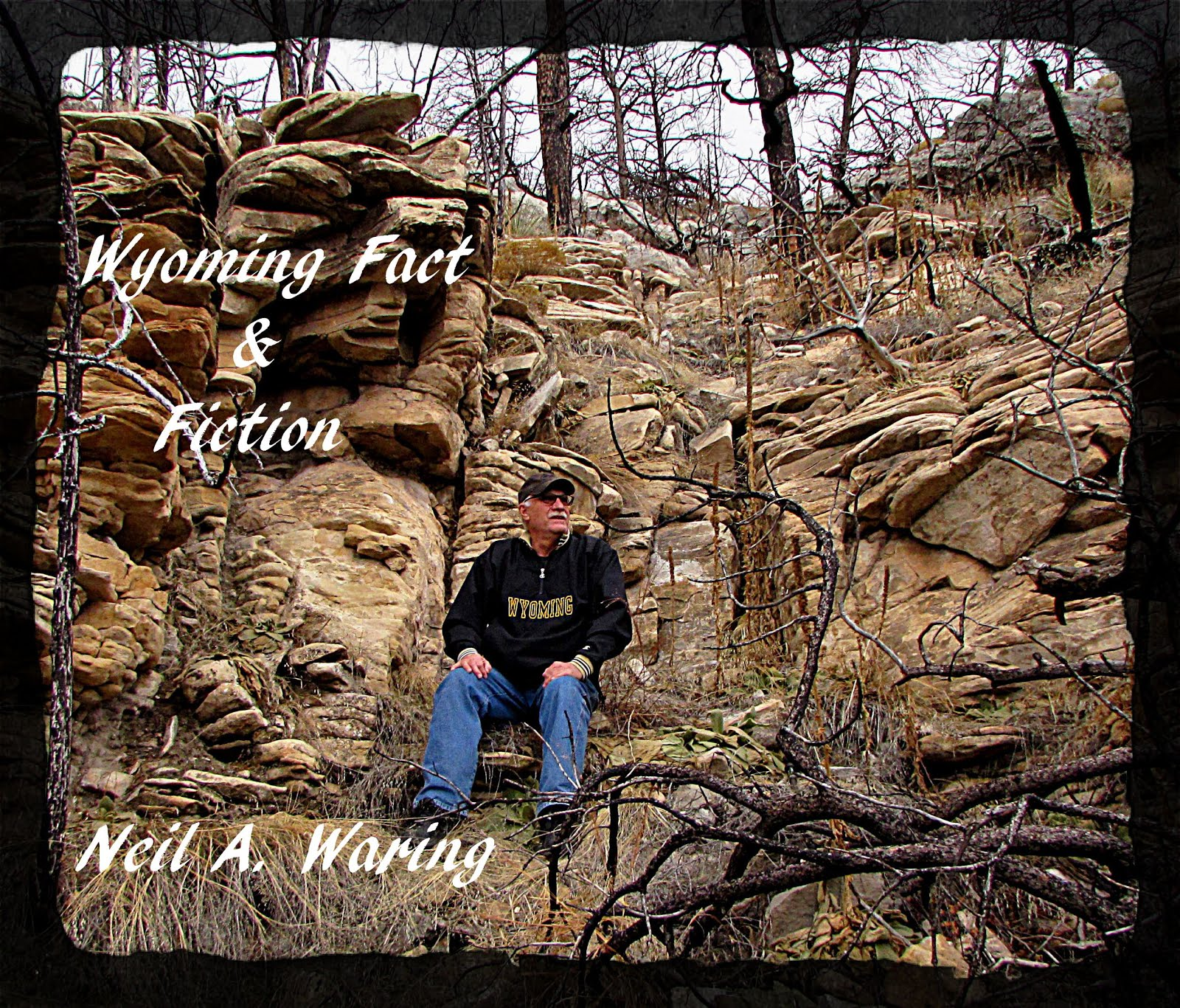Wyoming Fact & Fiction - Neil A. Waring