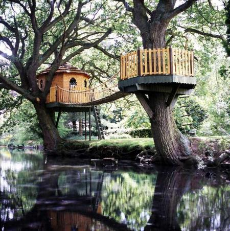 Home Styles: Tree houses style & design