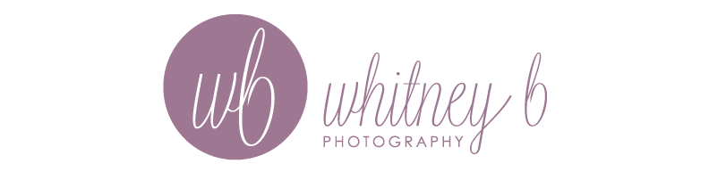 Whitney B Photography | Phoenix Wedding & Lifestyle Photography