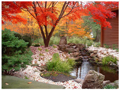 Home garden design ideas wallpapers pictures fashion for Japanese garden backyard designs