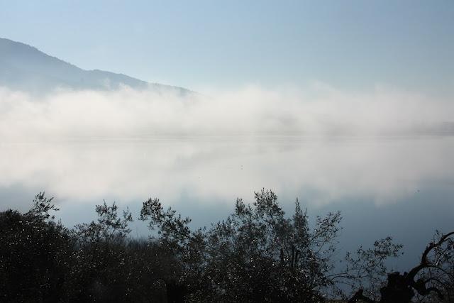 Πρωινό με ομίχλη στη λίμνη Αμβρακία!