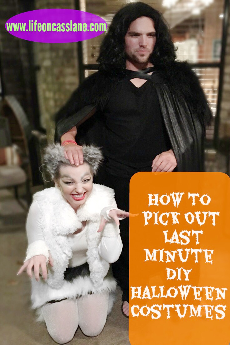 how to pick out a last-minute diy halloween costume | life on cass lane