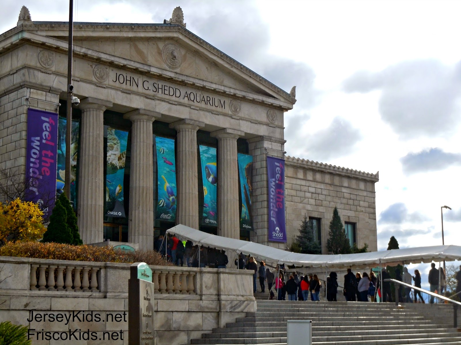 Shedd Aquarium is home to Pacific White-Sided dolphins. Take a degree tour of an underwater reef community. The 90,gallon Caribbean Reef exhibit, at the hub of Shedd's original galleries, is a great place to start your visit.