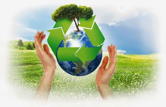 Sostenibilidad de las ONG'S