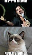 Love from the grumpy cat!