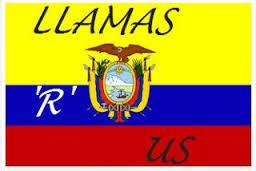 Llamas 'R' us