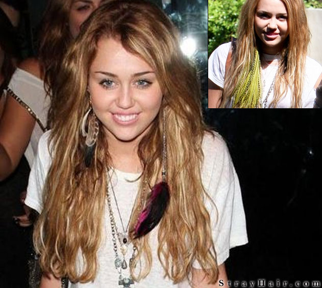 Valens Per Voi Trends Feather Hair Extensions Yay Or Nay