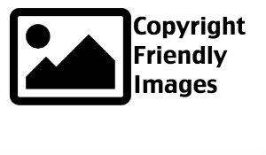 Copyright Friendly Images