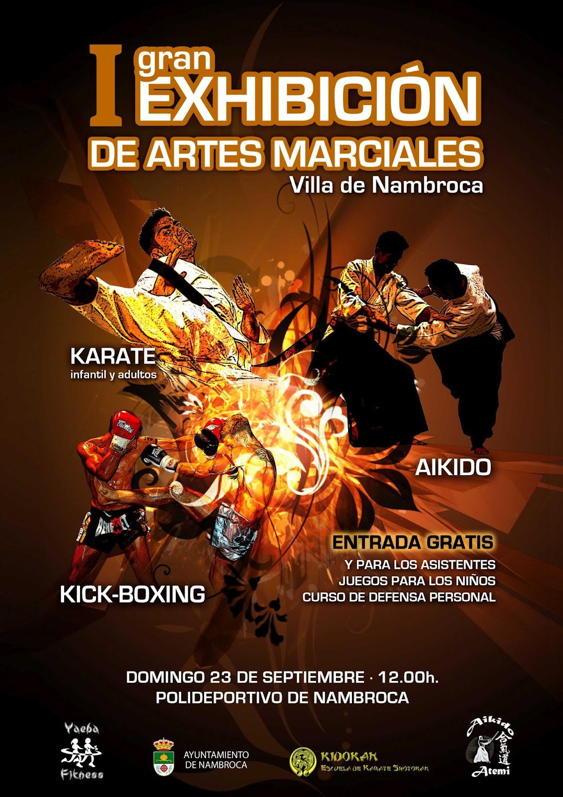 AIKIDO: Exhibición de Artes Marciales en Nambroca-Toledo