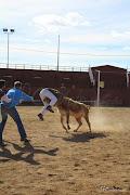 Fotos GFA Elvas 2015