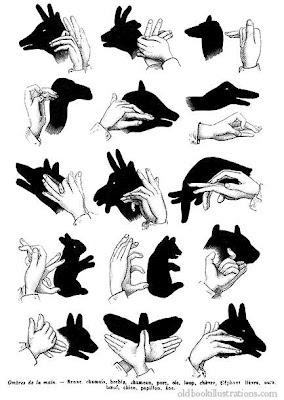posicao das mãos para brincar de sombra