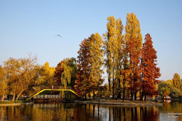 parc, foto blog