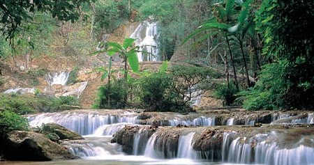 attraction review reviews luang national park phan chiang province