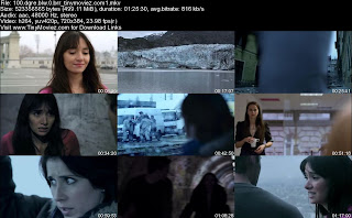 100 Degrees Below Zero (2013) BRRip 500MB