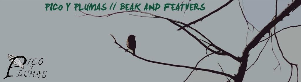 Blog sobre Aves