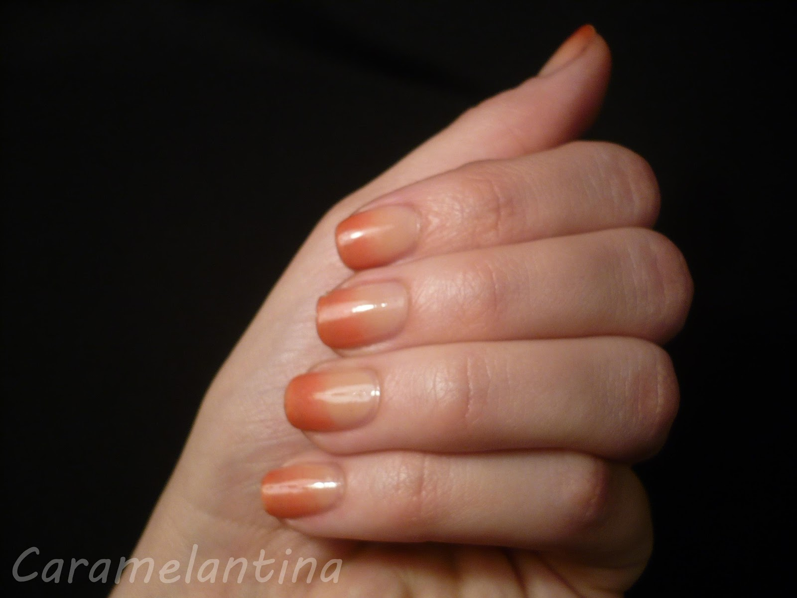 Gradient tutorial degradé Revlon Sheer Nude, Sally Hansen Something New