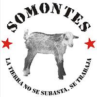 Apoyo a Somonte