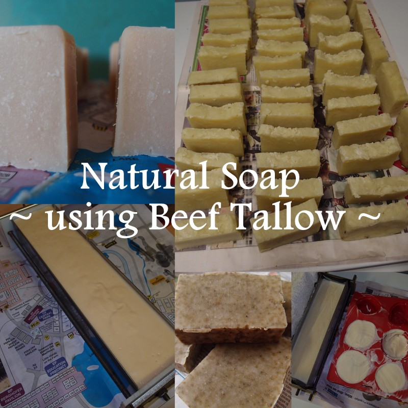 eight acres: natural soap using beef tallow