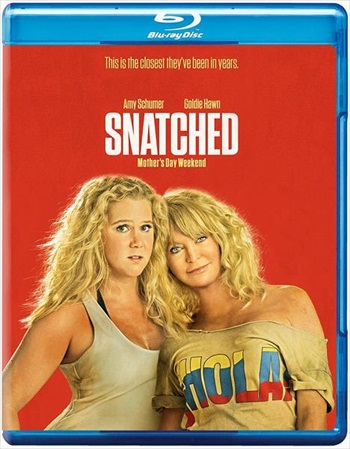 Snatched 2017 Dual Audio ORG Hindi 720p BluRay 950mb