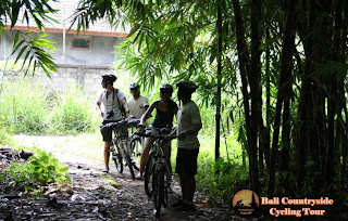Main way to Enter Bamboo Forest - Bali Countryside Cycling Tour Tracks