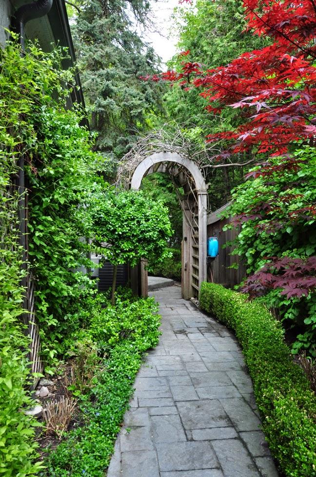 Three dogs in a garden more ideas for the narrow space for Narrow garden designs